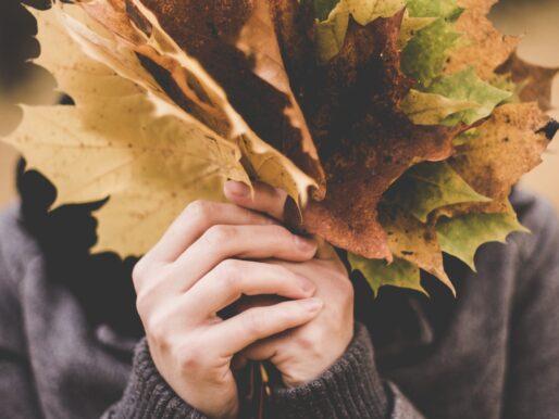 Wzmocnij swoją odporność przed jesienią